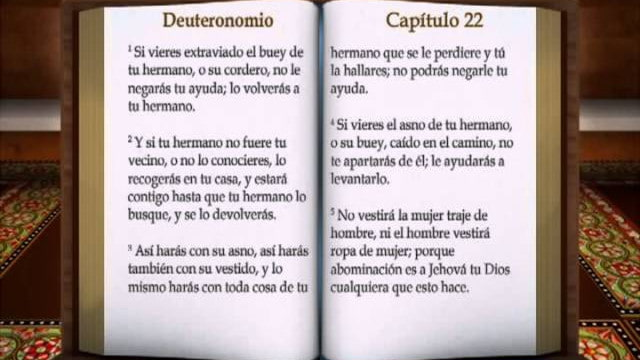 Matrimonio En La Biblia Reina Valera : La biblia quot deuteronomio completo reina valera antiguo