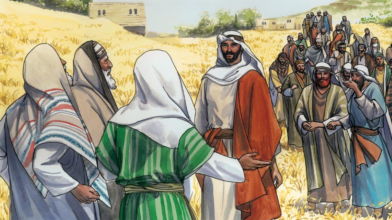 Los discípulos recogen espigas en sábado