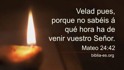 Mateo 24:42