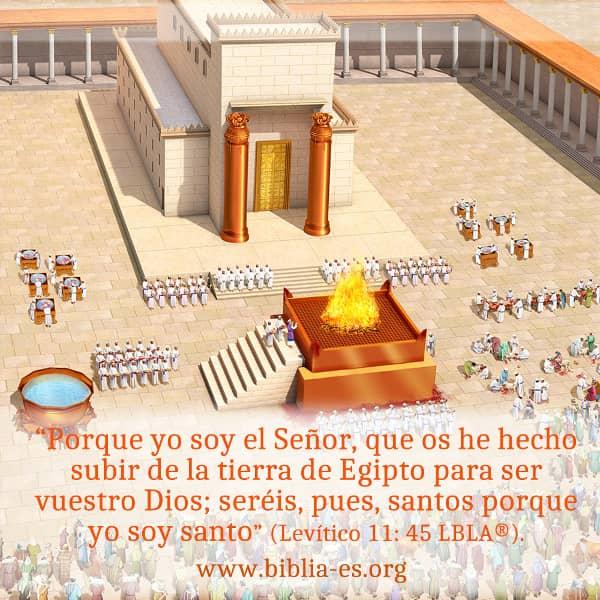 Levitico,Evangelio de Hoy,imagenes biblicas,versiculos de la Biblia