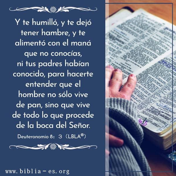 Estudiar la Biblia Evangelio de Hoy,Evangelio del dia,Deuteronomio,versiculos de la Biblia