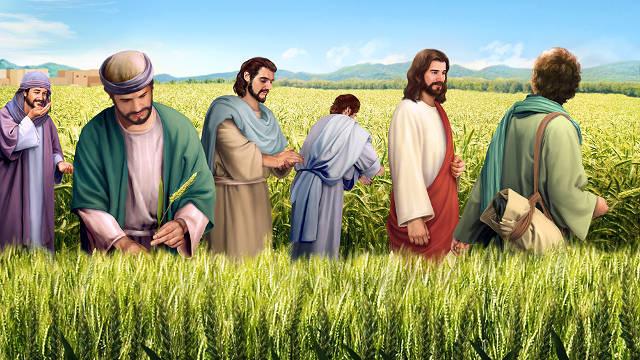 Estudios biblicos-El Hijo del Hombre es el Señor aún en el día de reposo.