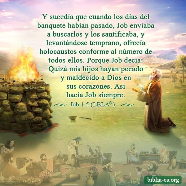 Evangelio De Hoy Job Temía A Dios Y Evitaba El Mal