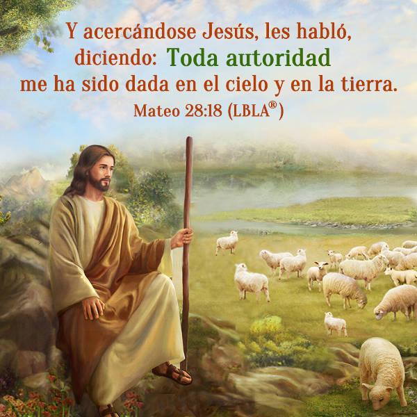 Evangelio de hoy,Biblia,Dios,Jesucriso,Evangelio del dia