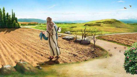 El sermón del monte, las parábolas del Señor Jesús y los mandamientos