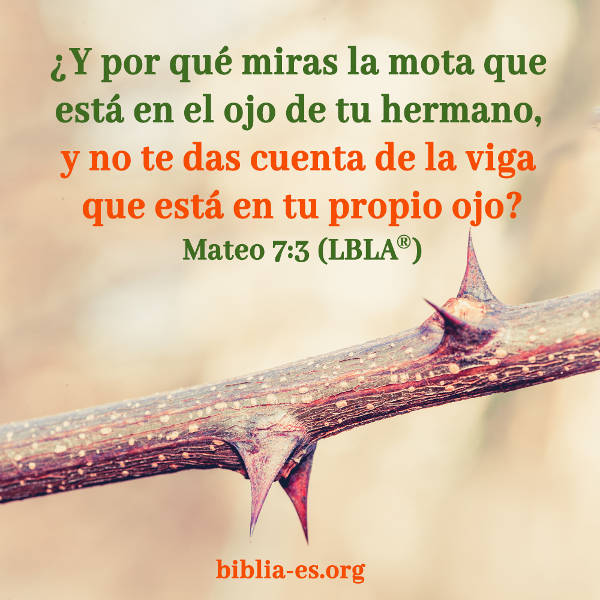 Evangelio De Hoy Lunes 16 De Julio De 2018 Mateo 73