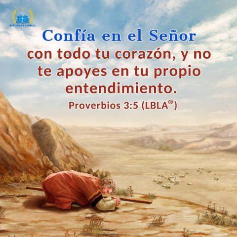 Evangelio de hoy,evangelio del dia,Biblia,Versiculos Biblicos,Proverbios