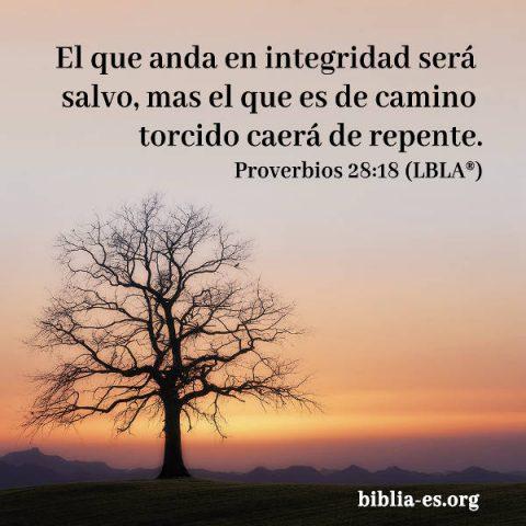 Evangelio de hoy,versiculo biblico proverbios 28-18