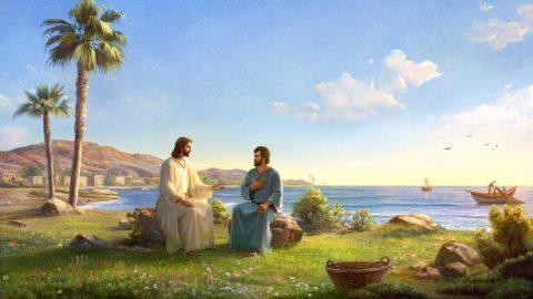 ¿Por qué solo Pedro reconoció a Jesús como Cristo?