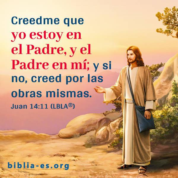 Evangelio De Hoy Juan 1411 Devocionales Cristianos