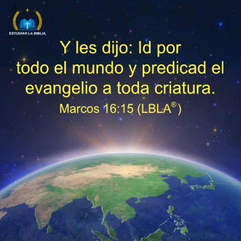 predicad el evangelio,versiculos de la Biblia,evangelio de hoy