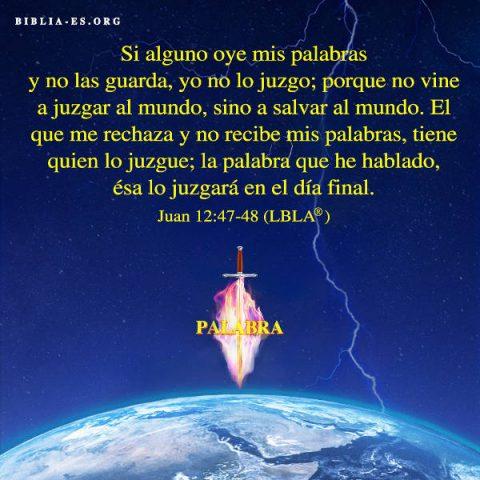 Juan,versiculos de la Biblia,imagenes biblicas,evangelio de hoy