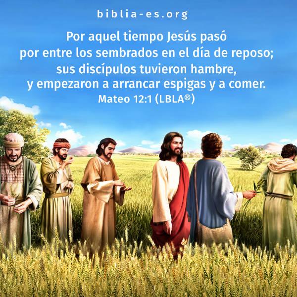 Jesucristo trabajaba durante el día de reposo,imagenes biblicas