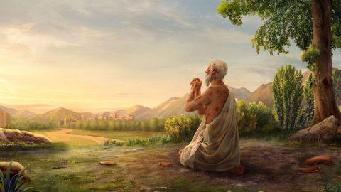 Lectura biblica hoy - La Verdad De Las Pruebas de Job