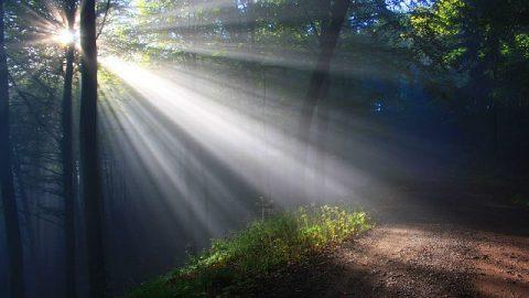 La gracia milagrosa: Aquel que me salvó al borde de la muerte