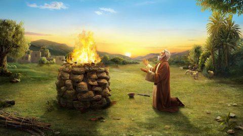 Valoraciones que Dios y la Biblia hacen de Job