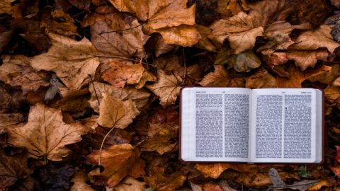 Estudios biblicos cristianos: Beneficios extraordinarios de estudiar la Biblia