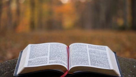 Cuáles son las palabras de Dios en la biblia