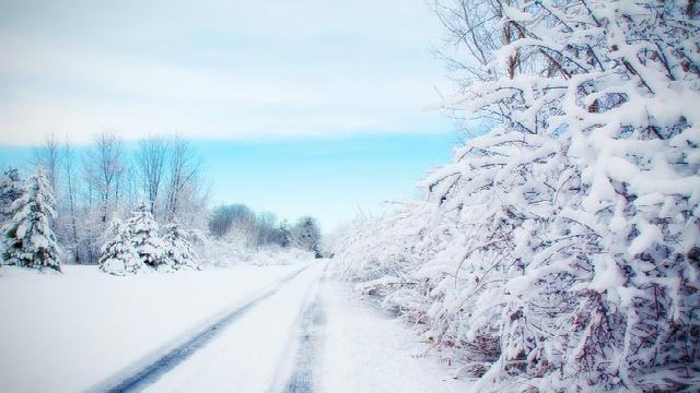 Escena de nieve