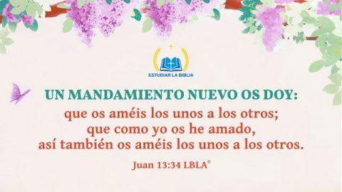 juan13:34