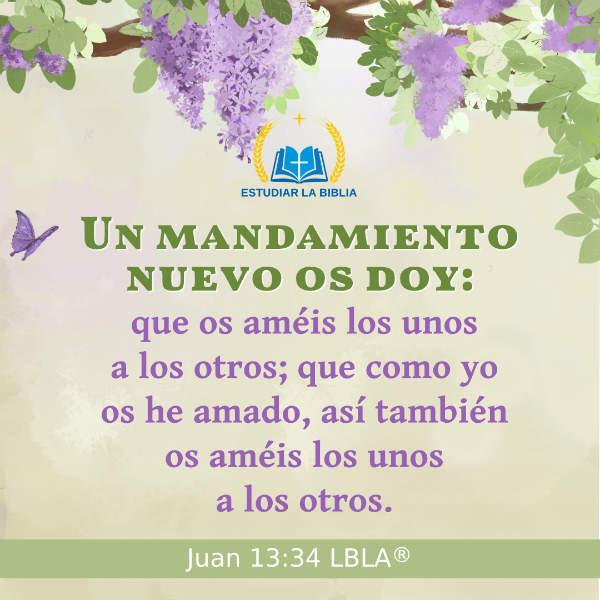 Juan 13:34