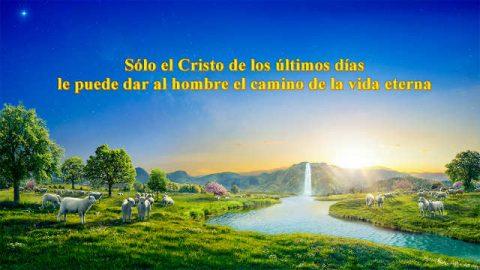 Sólo el Cristo de los últimos días le puede dar al hombre el camino de la vida eterna