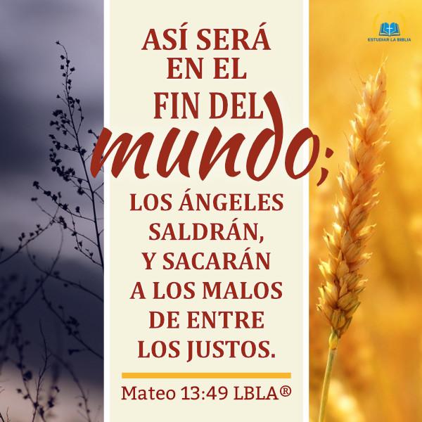 Evangelio de Hoy - Mateo 13:49