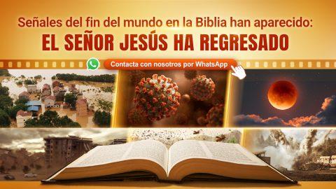 Señales del fin del mundo en la Biblia han aparecido: El Señor Jesús ha regresado