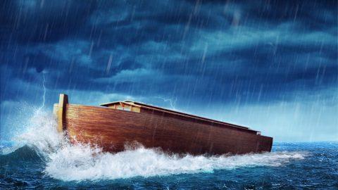 Advertencia traída por los días de Noé para el hombre de los últimos días