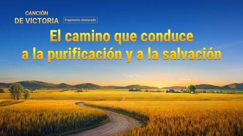 El camino que conduce a la purificación y a la salvación