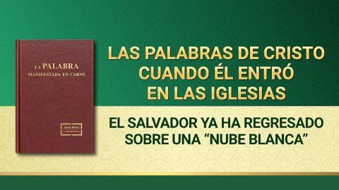 """La Palabra de Dios   El Salvador ya ha regresado sobre una """"nube blanca"""""""