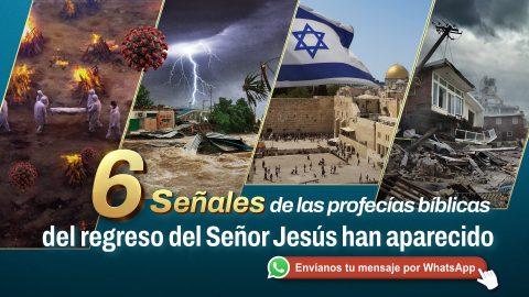 6 señales de las profecías bíblicas del regreso del Señor Jesús han aparecido