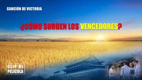 """Película evangélica """"Canción de victoria"""" Escena 3 - ¿Cómo surgen los vencedores?"""