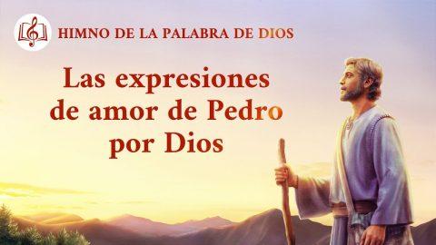 Canción cristiana | Las expresiones de amor de Pedro por Dios