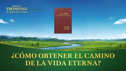 """""""Desde el trono fluye el agua de la vida"""" Escena 8 - ¿Cómo obtener """"el camino de la vida eterna""""?"""